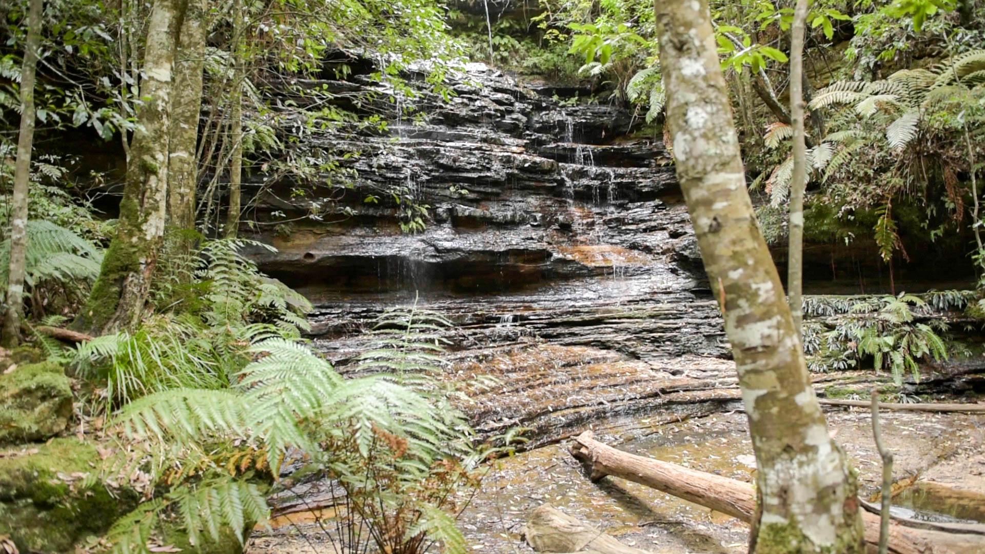 Junctio Falls Lawson Creek. Photo: V Hong