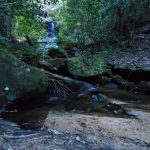 Federal Falls Cataract Creek, sediments, July 2018 (Photo P Ardill)